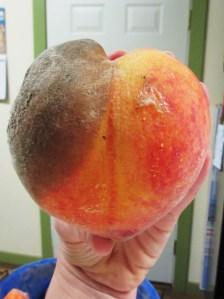 Two sides to every peach, two sides to every person.