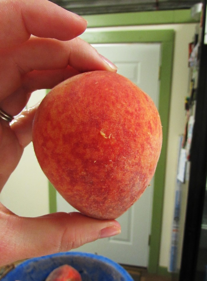 What appears on one side to be a beautiful, perfectly ripe, unblemished peach.....