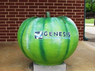 Genesis Health