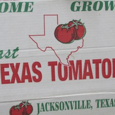Jacksonville Tomatoes are the Best!