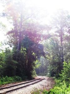 The Texas State Railroad borders our property on the west.