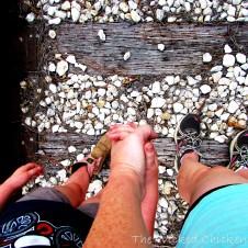 walk addie train