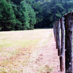 walk fence