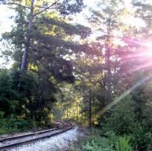 walk train