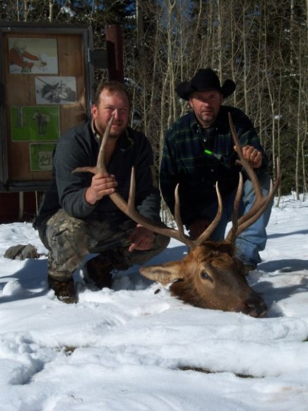 Judd and Rob and Elk.