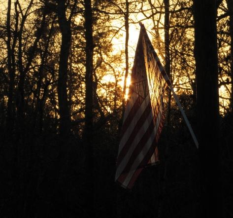 walk flag