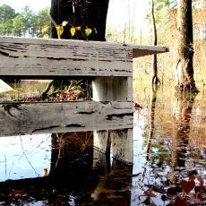 cabin bench