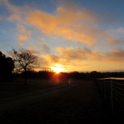 Texas sunrise