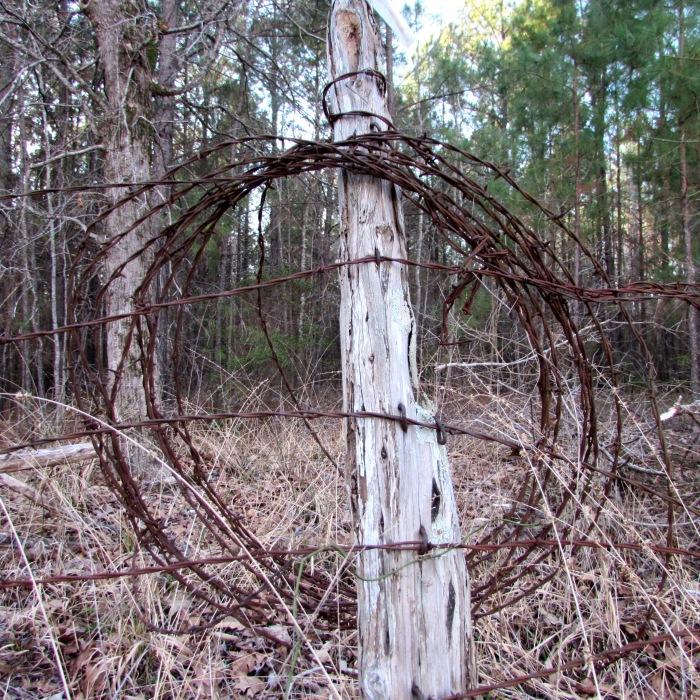 walk wire