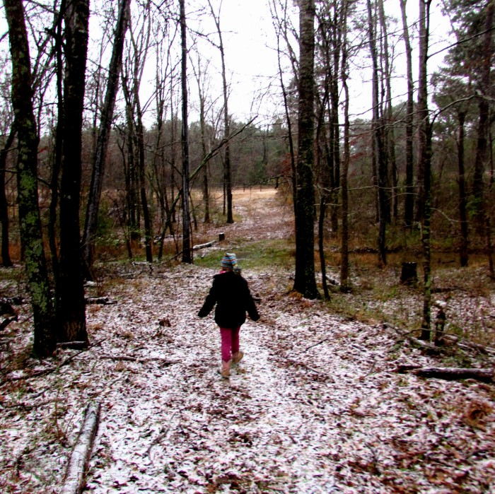 walk addie snow