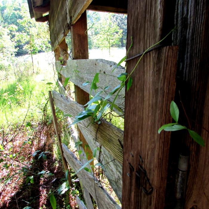 barn fence