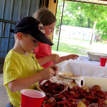 addie kason crawfish