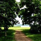 walk washingotn