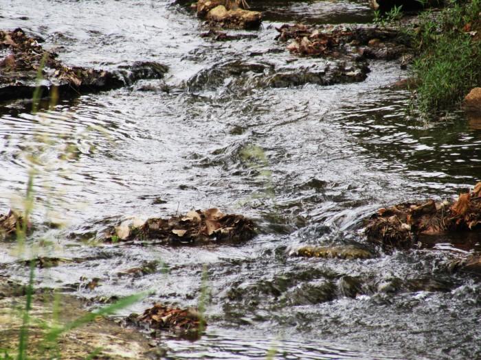 walk creek nac