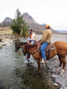 elk camp horses