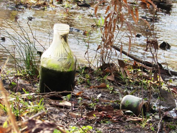 walk bottle