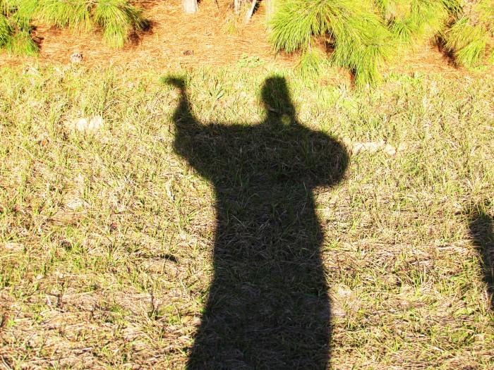 walk shadow
