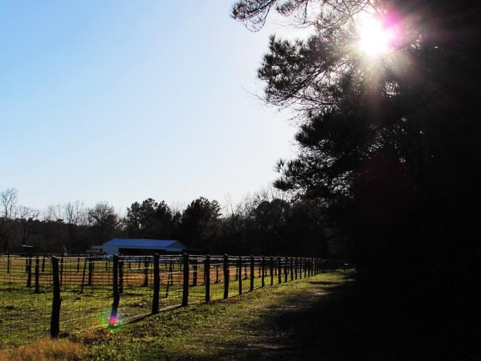 walk fence barn