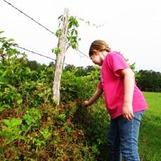 walk addie berry