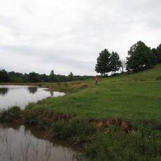 walk pond addie